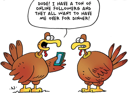 Thanksgiving turkey images funny