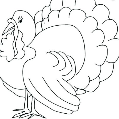 Thanksgiving turkey images coloring pages